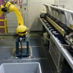Roboter_IMGP2385_1.jpg
